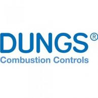 """Dungs 231718 Flange 1-1/4"""" NPT"""