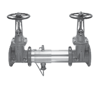 """Watts 0792345 Reduced Pressure Zone Assembly 10"""" (957N-DNRS)"""
