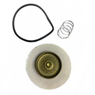 General Controls S108506H Diaphragm Kit
